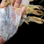 ปลาหมึกหอมแห้ง เบอร์3 (ครึ่งกิโลกรัม)