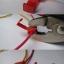 10 ชิ้น ตลับหนีบต่อสายไฟ Red ขนาด 0.5-1.5mm Crimp Terminal thumbnail 2